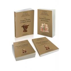 La cort napolitana d'Alfons el Magnànim:  el context de Curial e Güelfa (3 vol.)