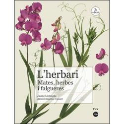 L'herbari: mates, herbes i falgueres (2ª Ed.)